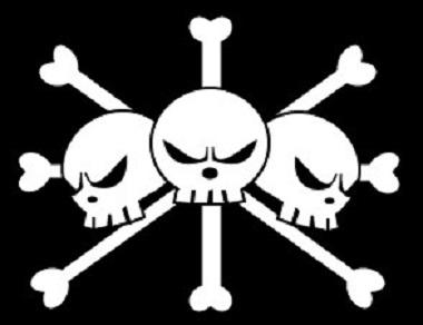 ワンピース海賊旗コレクション!各海賊の8つの旗を徹底比較
