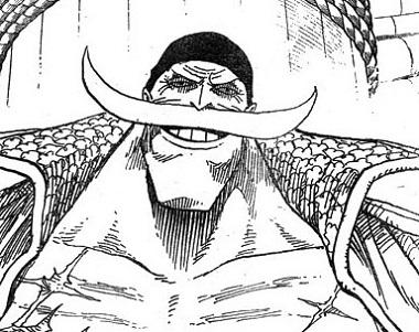 【ワンピース】最強の海賊団を束ねる男!白ひげに隠された秘密…